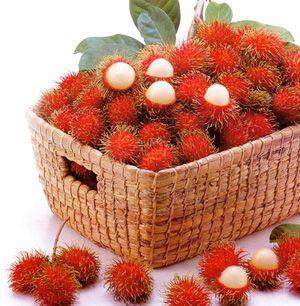 Top 15 Health Benefits and Uses of Rambutan