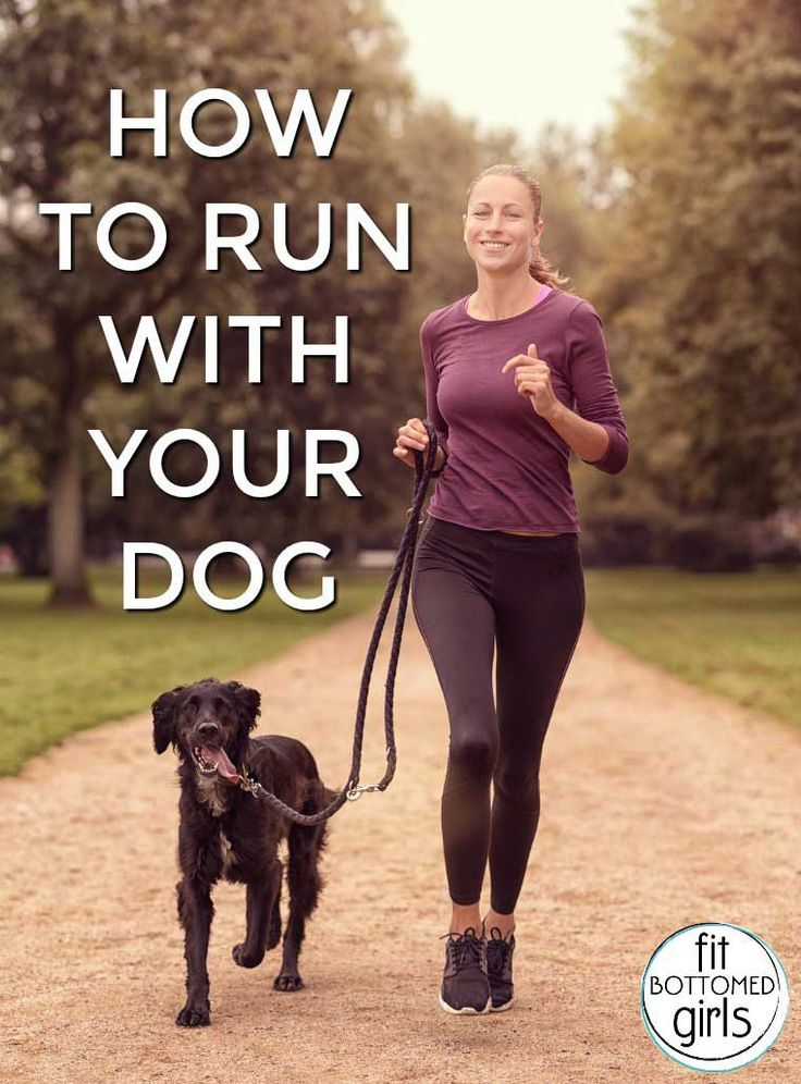 The Complete Guide to Running With Your Dog (Because it's an awesome workout for your life!) - Fit Bottomed Girls