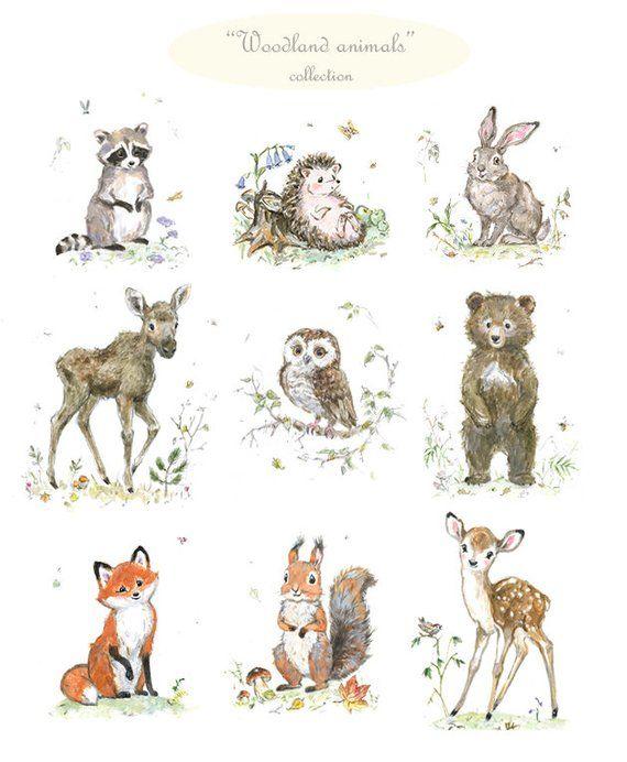 Woodland Nursery Print Set Woodland Animals woodland friends Print Bear Raccoon Rabbit Owl Fox Hedge