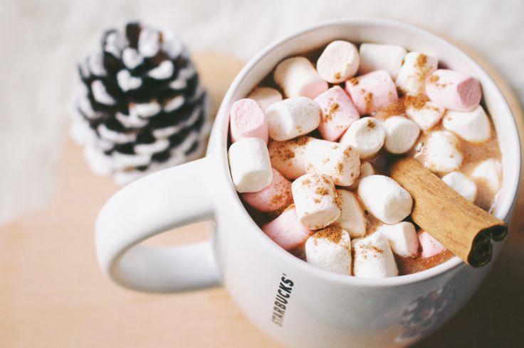 Comme la plupart des gens, je voue un amour sans égal aux chocolats chauds surtout quand ils sont bien épais et onctueux. C'est pour moi quelque chose qui a une valeur sentimentale. Cela mer…