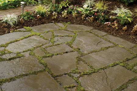 DIY - bluestone patio, moss and bluestone, I might have to sleep on the patio...I might just know someone that can get me some bluestone....