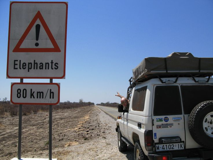 Elephants running at 80 km/h?. Heading to Chobe National Park, beautiful Bostwana!! :-)
