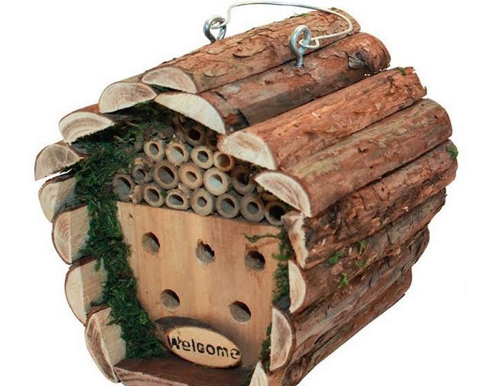 Guest House Bee Insect Free Wooden Nest. AmazingGarden Guest House Wooden Realistic Natural designed housesfor NestingBee, Birds or Squirrels as Guests. For people who respects animal`s freedom and especially birds & Squirrels but they likes their partner, in their yard or Garden or near their windows. | eBay!