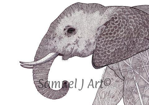 'Elephant' – Samuel J Art