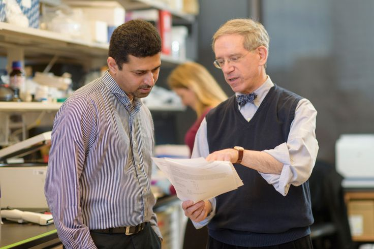 Making an IMPACT: MSK's Gene-Sequencing Test Reveals New Findings about Hereditary Cancer Risk
