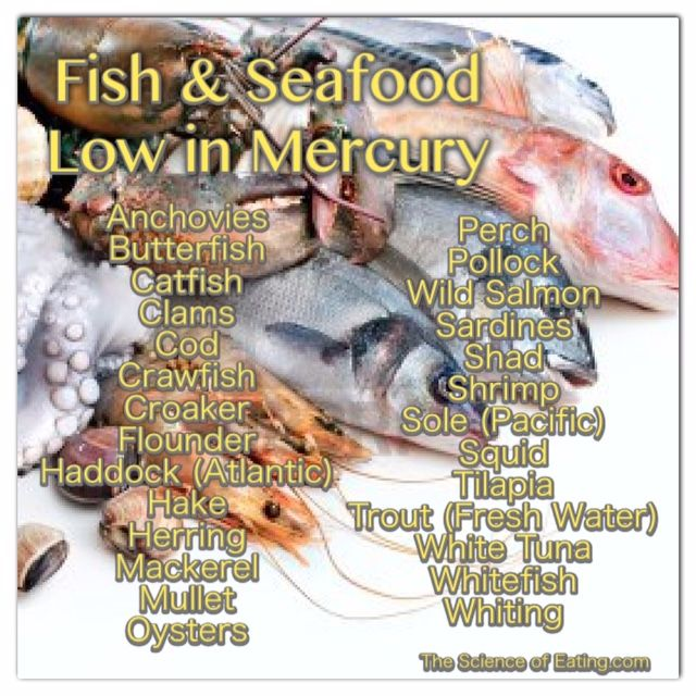 how to extract mercury from fish