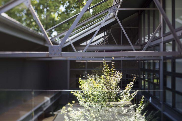 31 Australia Street, Camperdown by Corben Architects #atrium #lightwell #architecture #camperdown #corbenarchitects
