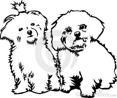 Two Cute Little Dogs