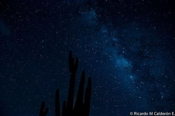 Mexican Landscapes: Zapotitlan & Sn Juan de la Raya, Puebla, Between Cactus, Stars and Fossils