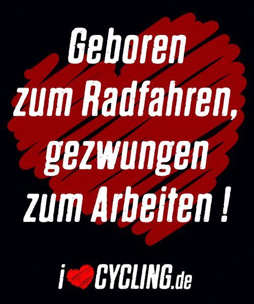 Geboren zum Radfahren, gezwungen zum Arbeiten!