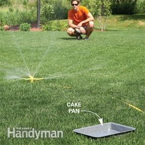 Measure the right amount of water: Set a cake pan halfway between your sprinkler and the edge of the spray pattern. Watch your clock to see how long it takes the sprinkler to fill the pan with 3/8 in. of water. Water for that amount of time three times a week, unless it rains.