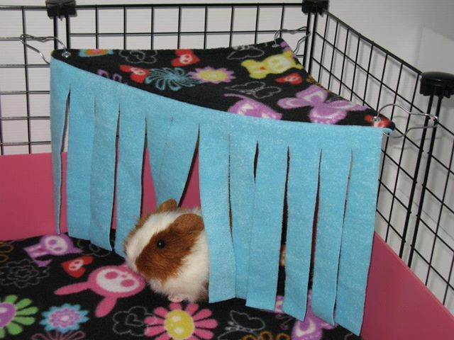 You have enough fleece to make one for the hamster her own for Diy guinea pig things