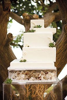 They look like a stack of gifts :): Modern Wedding Cakes, Wedding Ideas, Baking Shops, Succulents Wedding, Winter Wedding Cakes, White Cakes, Coral Wedding, Cakes Stands, White Wedding Cakes