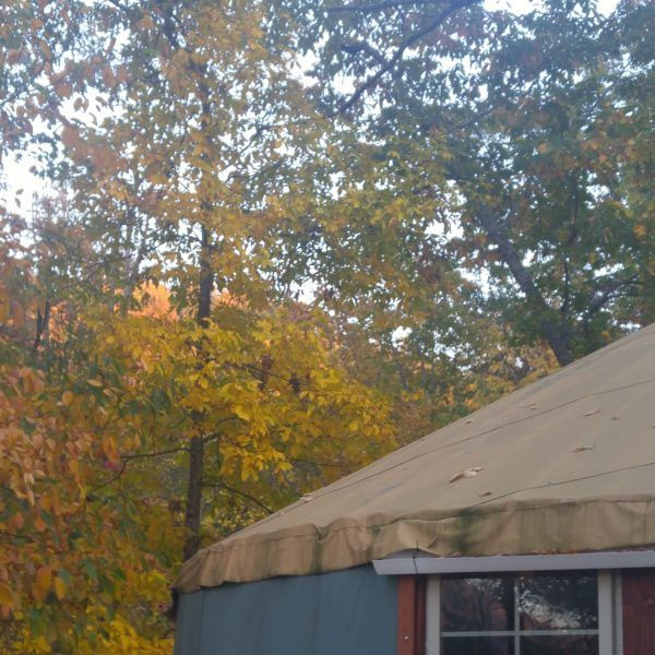 Sunny, Bohemian Mountain Top Yurt for Sale | Small Home Listings - Small Homes For Sale