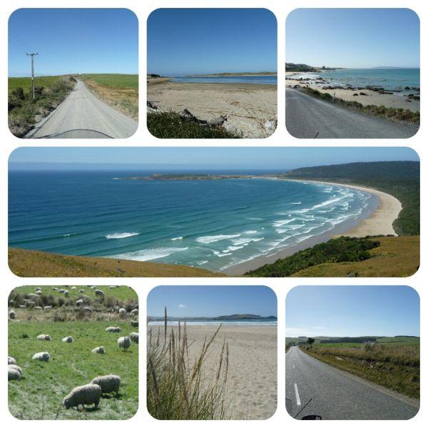 The Catlin coast