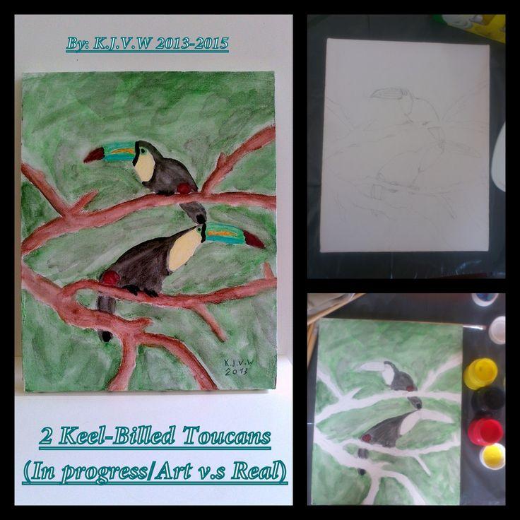 2 Keel-Billed Toucans | ...