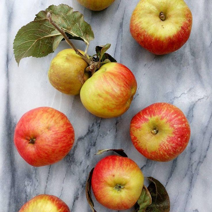 5 trucs pour empêcher les pommes de brunir - Trucs et astuces