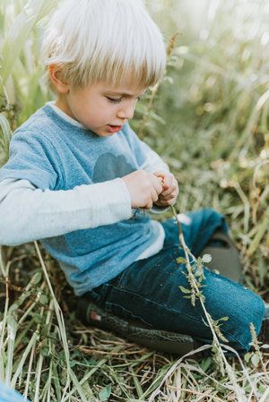 Documentary fall photo session with 4 year old in cornfield // Victoria BC - Nicola Reiersen Photography