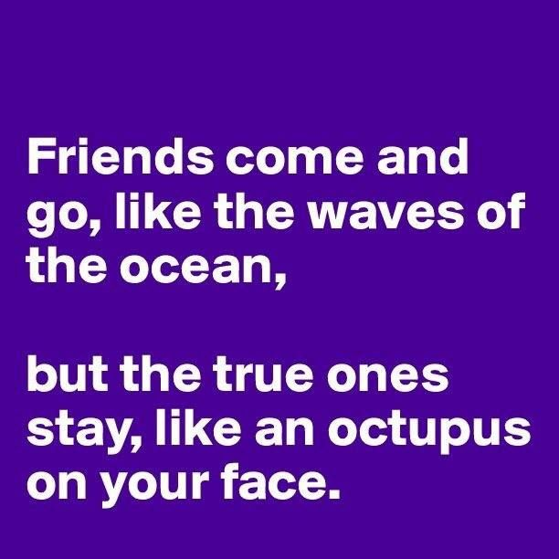 friends come and go, like the waves of the ocean, but the true ones stay, like an octupus on your face