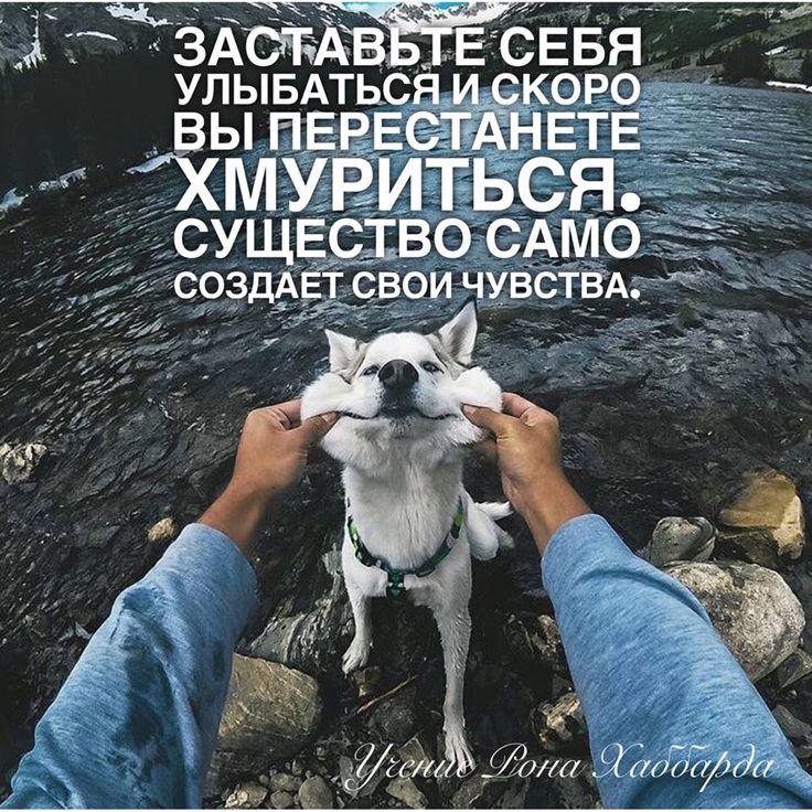 https://www.facebook.com/RonHubbardTeaching/photos/a.1073711345985514.1073741828.1073684025988246/1734312959925346/?type=3