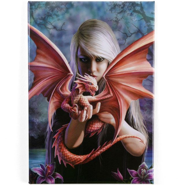 Wholesale Dragon kin fridge magnet - Something Different