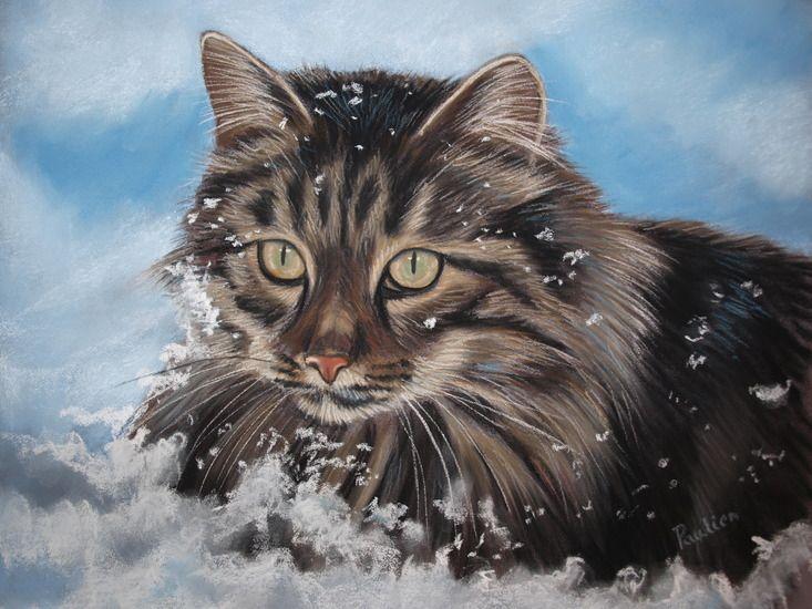 exto.nl | Noorse boskat in sneeuw van Paulien Janssen pastel