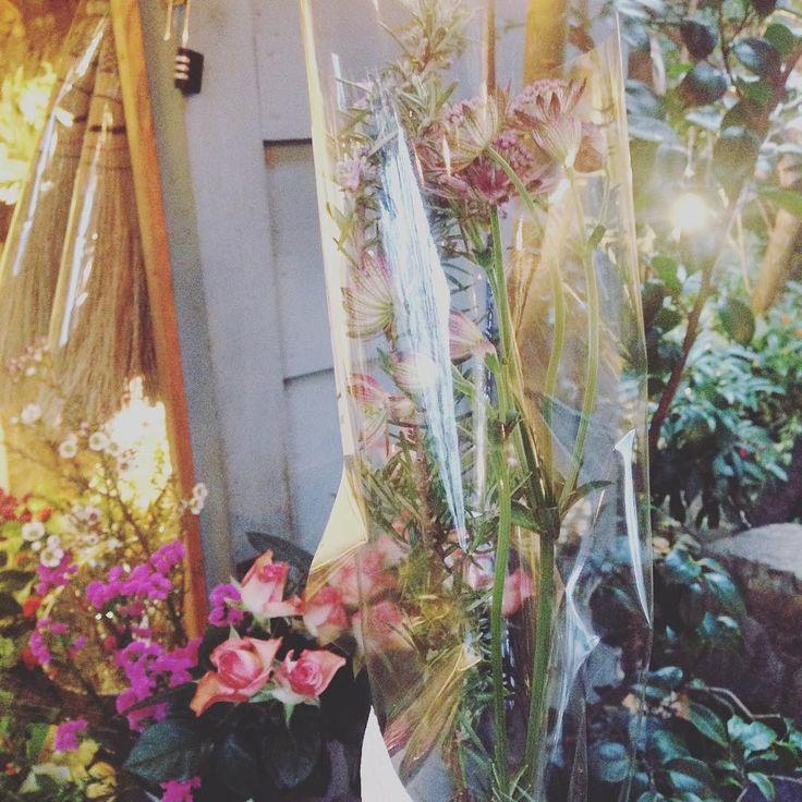 今なぜかリューカちゃん単体で玄関にいるので合わせて飾れるお花をリトルさんでみつくろい花の咲いたローズマリーげっとぉーすてき  #flower #thelittleshopofflowers #harajuku