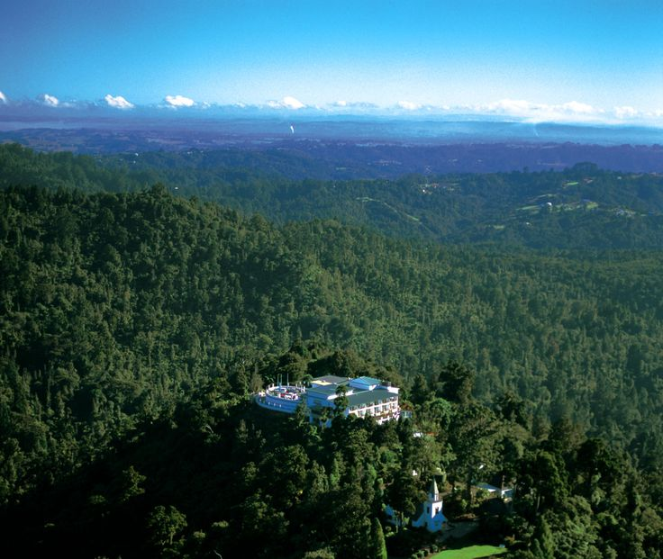 Rainforest Escape Package Enjoy total luxury with Auckland's Waitakere Estate's Rainforest Escape Package. Share some time with that special someone at our boutique Auckland hotel nestled in the stunning Waitakere Ranges. The Rainforest Escape Package includes:  • Bottle of Deutz Marlborough Prestige Cuvée on arrival • Three course a la carte dinner   • 1 nights accommodation in  deluxe room accommodation  • Cooked breakfast  All For Only $480.00 incl GST, per double, per night.
