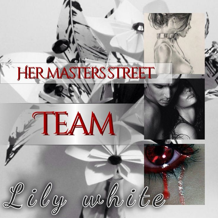 ... street team... Her masters courtesan made by Katy off Goodreads