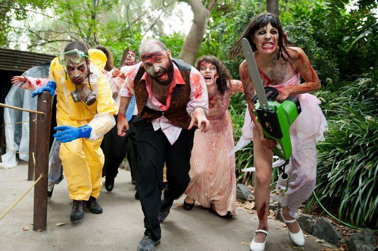 Halloween 2013 aussi à PortAventura avec notamment l'expérience inspirée de la saga de films d'horreur espagnols [REC]. #Halloween #Halloween2013 #REC #PortAventura