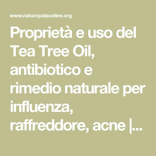 Proprietà e uso del Tea Tree Oil, antibiotico e rimedio naturale per influenza, raffreddore, acne   Naturopataonline