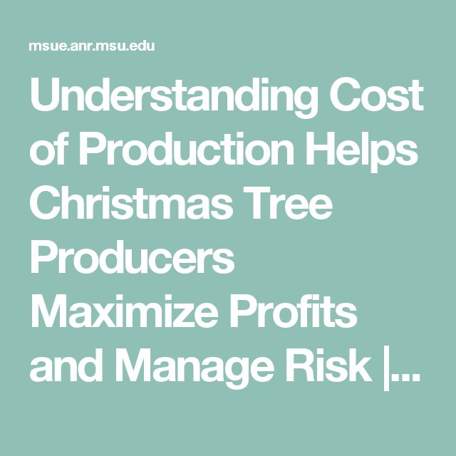 Christmas Tree Producers Part - 29: Understanding Cost Of Production Helps Christmas Tree Producers Maximize  Profits And Manage Risk | MSU Extension