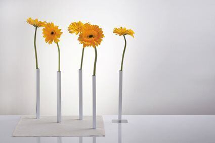 Decorate your dinning table with these magnetic vases.