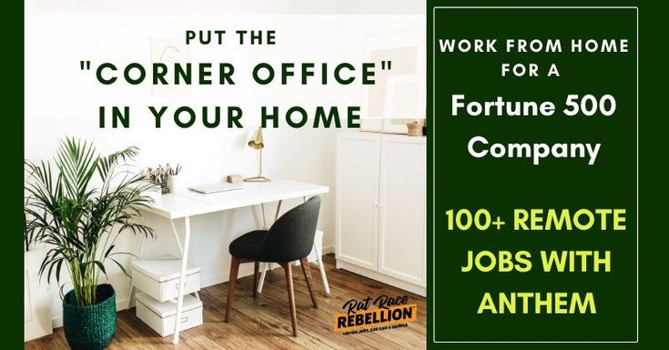 anthem work from home positions