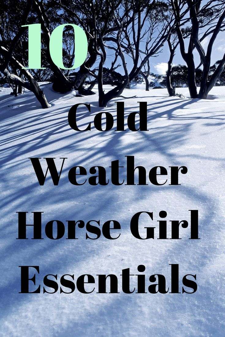 Ten cold weather horse girl essentials every equestrian needs to stay warm this winter. Winter is officially here, and no one know how to combat the cold like a true horse girl.