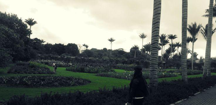 Jardin Botanico -Bogota Colombia