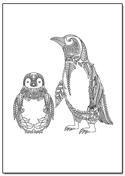 Penguin Coloring Page Coloring Pages Pinterest Coloring Pages
