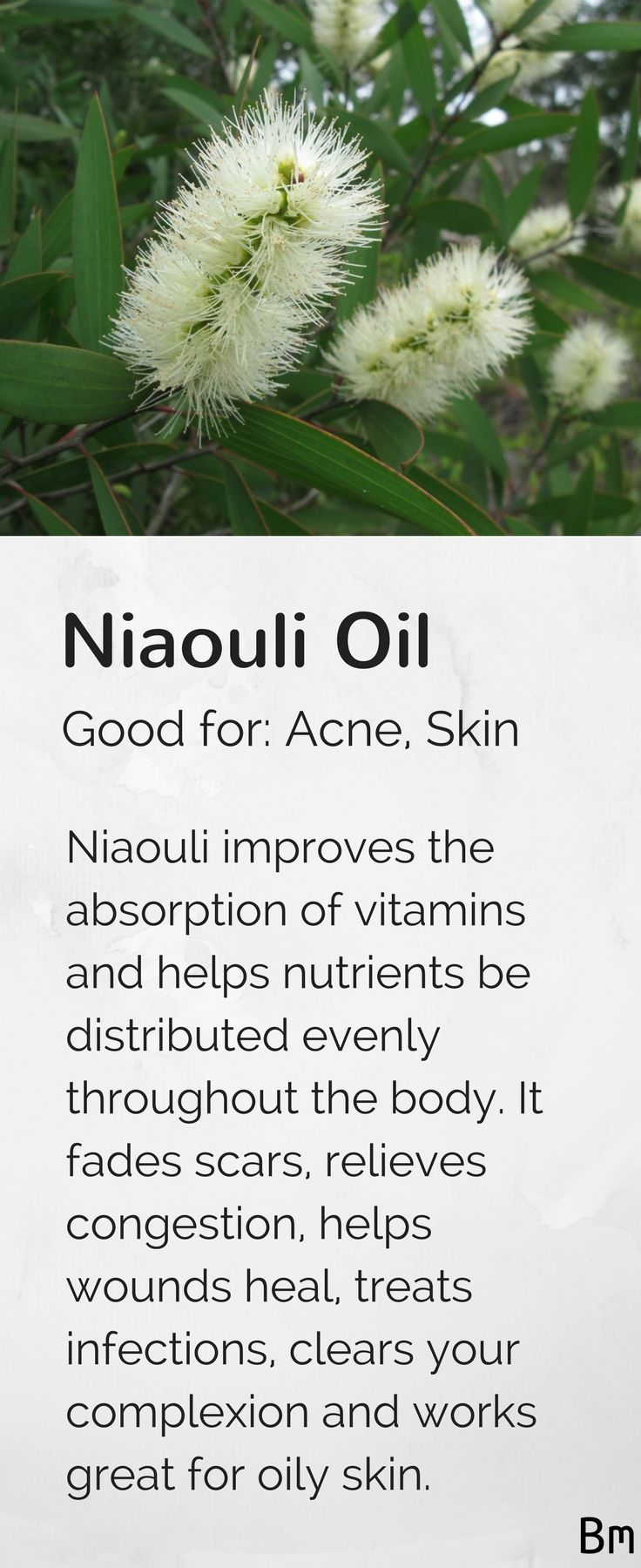 Niaouli essential oil fades scars, relieves congestion, helps wounds heal, treats infections and clears your complexion. Add this to your favourite moisturiser and use it after cleansing or add some to your body lotion and use it on any scars. Learn more about niaouli and other essential oils in this complete guide! Just click on the pin above :)