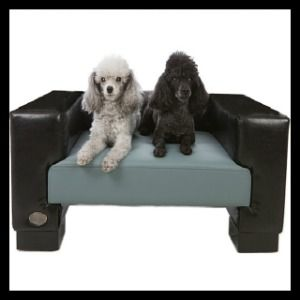 Faux Leather Dog Bed - Chester & Wells
