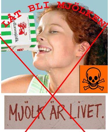 Jag har länge varit övertygad om att vi bör undvika mjölk. Därför har jag medvetet uppfostrat mina barn att inte dricka mjölk genom att helt enkelt inte kö