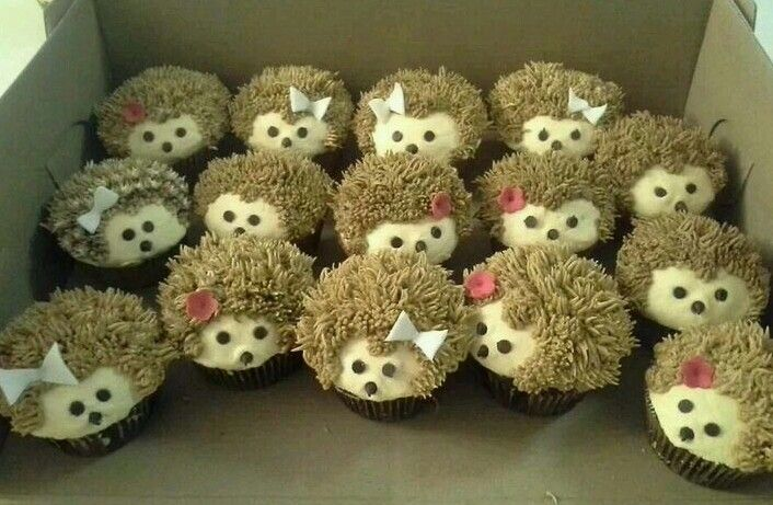 Adorable Hedgehog Cupcakes ♡♡♡