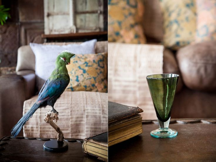 Curate your Space > Amatuli Knysna Loerie, old books and green tinted glassware