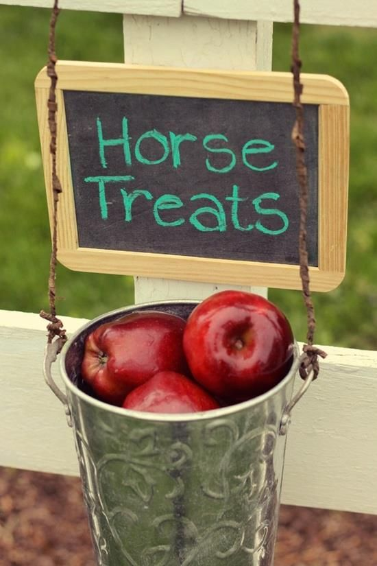 Cute idea for the kids who like to feed your horses