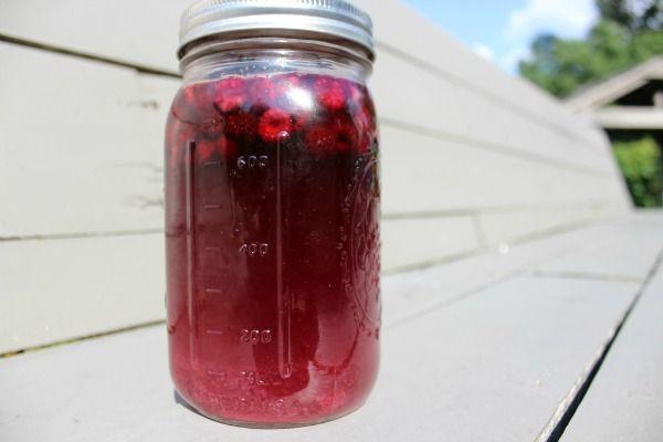 Kvas z černíc - Black malina kvass je dieťa-priateľský fermentované ovocný nápoj, ktorý je ľahké, aby sa doma.  Je to tiež zdravú alternatívu ku komerčným sódovky.