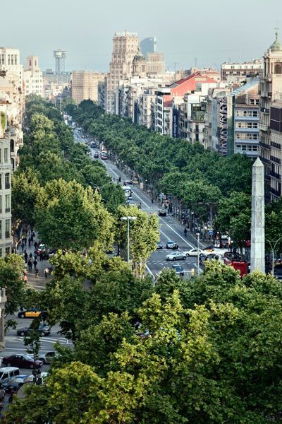 Paseo de Gracia, Barcelona.  Passeig de Gràcia is part of the 5 km shopping line and is an important road in Barcelona. The wide boulevards on either side of Passeig de Gràcia add to the feeling of opulence that this road gives you. Passeig de Gràcia is also home to two of Gaudí's most important creations here - La Pedrera and Casa Batlló.  See photo guide.