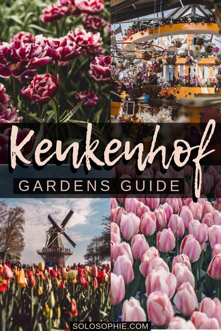 2b64632c84ad55a96a12bb7d97289fda - Tours From Amsterdam To Keukenhof Gardens