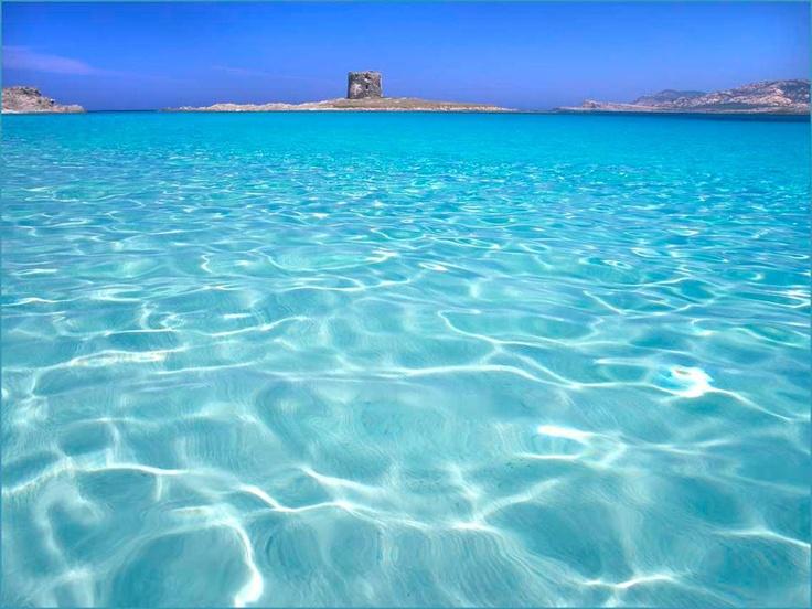 stintino, Sardinia...has to be the best beach ever in Europe.