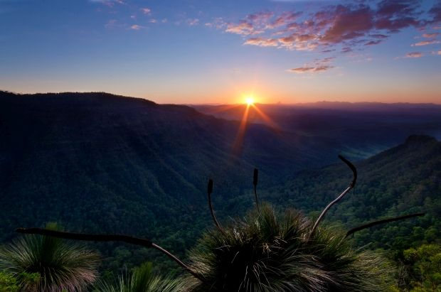 #Lamington NP shines in O'Reilly's photo comp