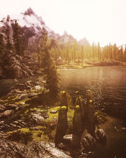 this is why i love skyrim. the scenery