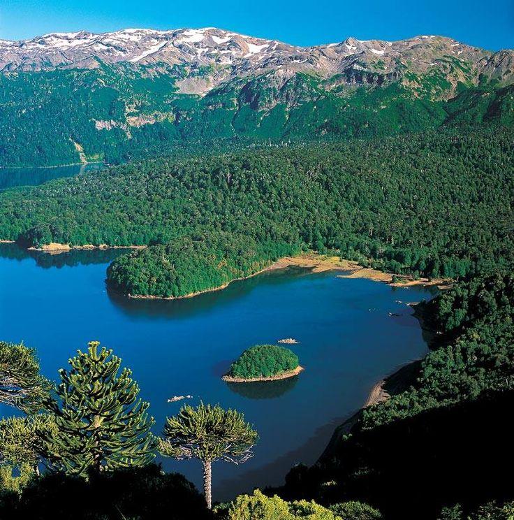 Parque Conguillio.Pais Chile, al final del mundo.